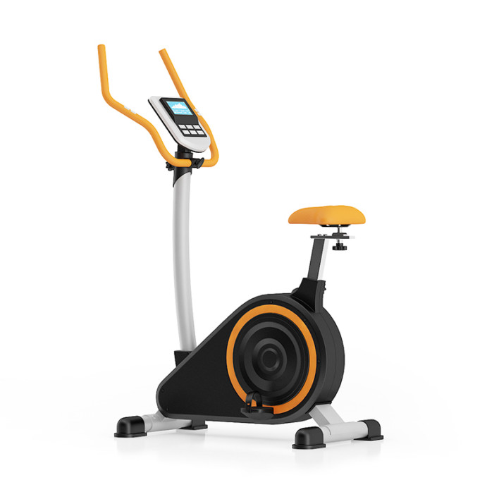 Stationary Magnetic Bike