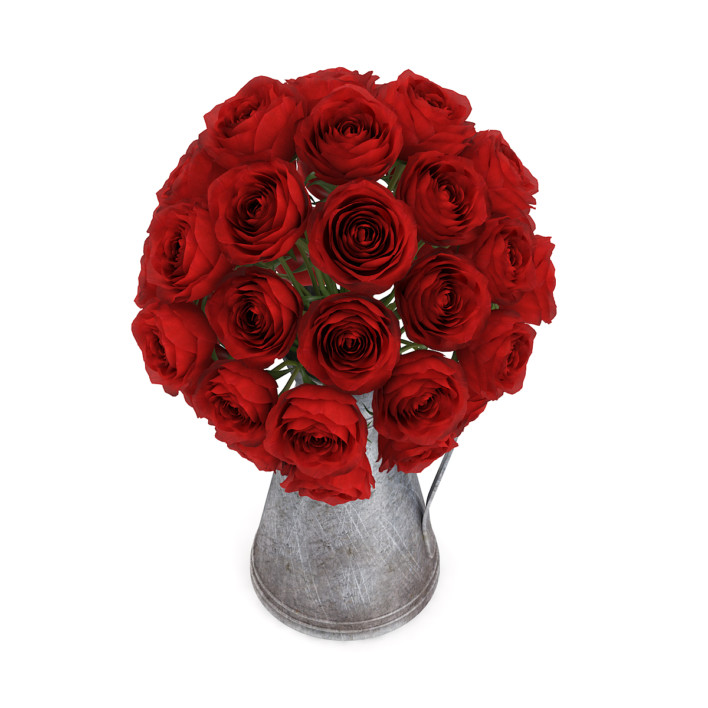 3d Red Roses in Metal Kettle