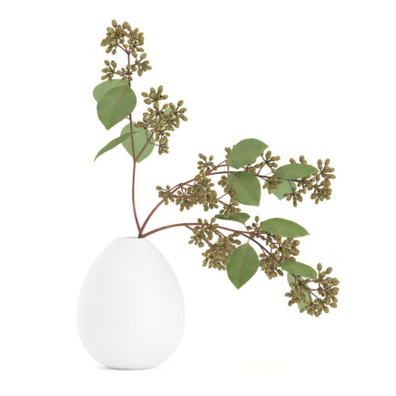 3d Sugar Gum Twigs in White Vase