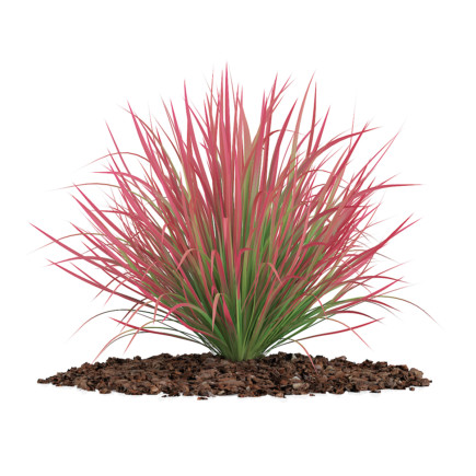 3d Decorative Grass