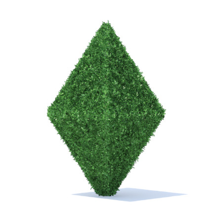 Diamond Shaped Hedge 3D Model