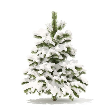 Pine Tree with Snow 3D Model 1.4m