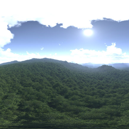 Before Noon Forest HDRI Sky