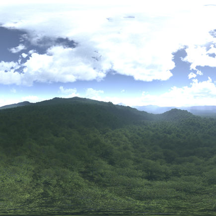 Noon Forest HDRI Sky