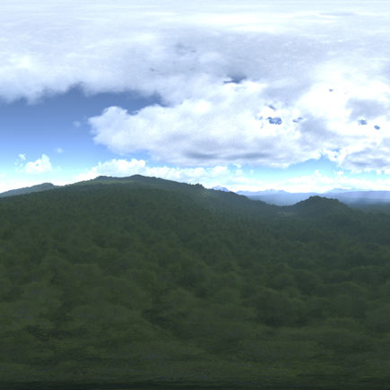 Afternoon Forest HDRI Sky