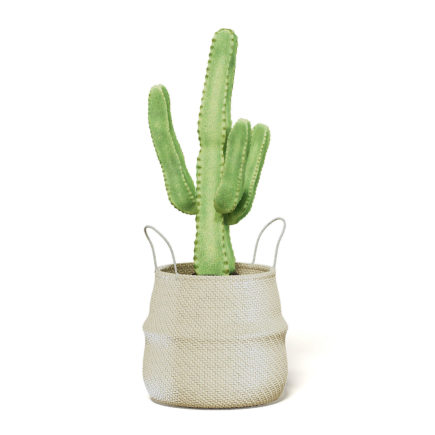 Cactus in Wicker Basket 3D Model